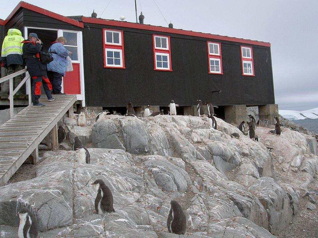 Forschungsstation Port Lockroy mit Pinguinen, Antarktis