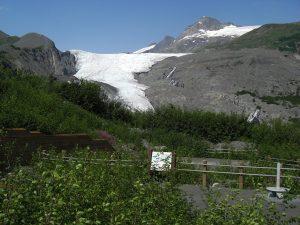 Gletscher alaska