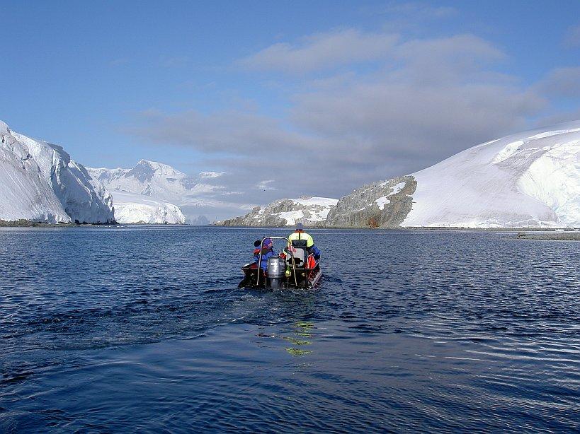 Zodiacausfahrten in der Antarktis
