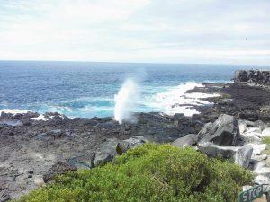 Lavafelsen auf Galapagos
