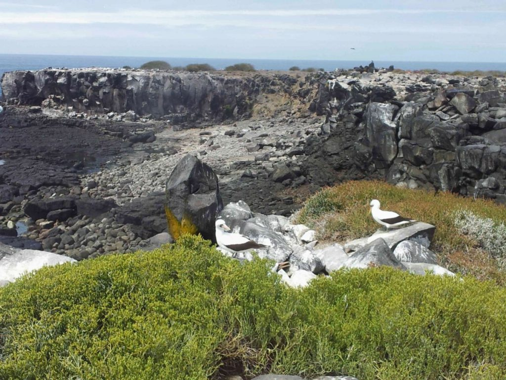 unbewohnte Insel auf dem Archipel von Galapgos, Ecuador