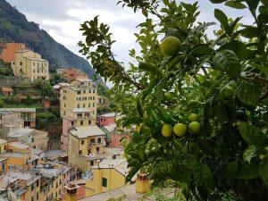 Blick auf Riomaggiore, Ligurien