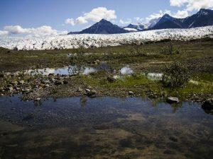 Amerikas größter Nationalpark - Wrangell-St. Elias