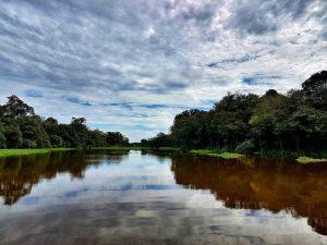 Nebenarm des Amazonas
