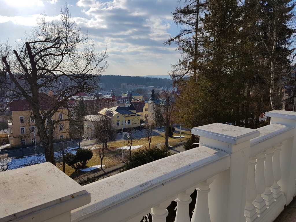 Blick auf das Häusermeer von Marienbad