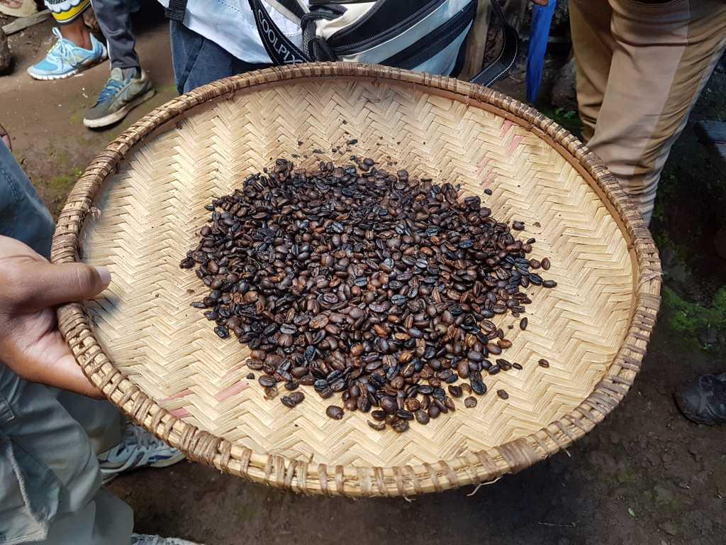 Kaffebohnen, die am Fuß des Kilimandscharo geerntet wurden.