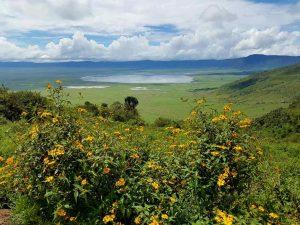 Blick in den Ngorongoro-Krater in Tansania