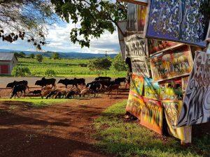 """tansanische Tingatinga-Malereien, die am """"Northern Circuit"""" zu den Nationalparks verkauft werden."""