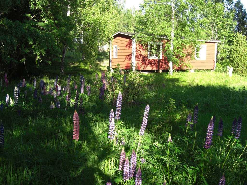 Ein Ferienhaus auf Åland, dem Schärenparadies der Ostsee