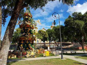 Christbaum vor der Kathedrale in Manaus, BRasilien