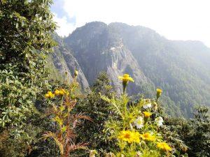 Ausblick auf das Tigernest-Kloster oberhalb des Paro-Tales in Bhutan