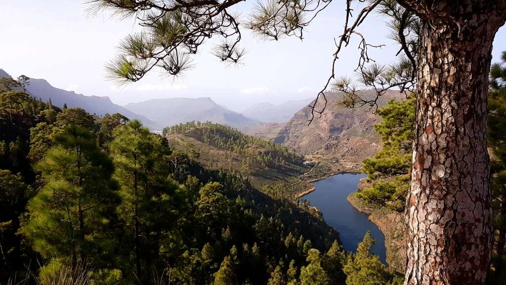 Stausee im Hinterland der Kanareninsel Gran Canaria, Spanien