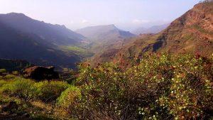 bergiges Hinterland der Kanareninsel Gran Canaria, Spanien