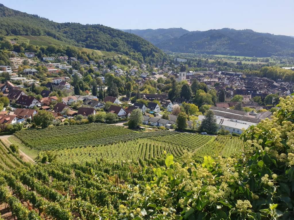Aussicht vom Staufener Schlossberg