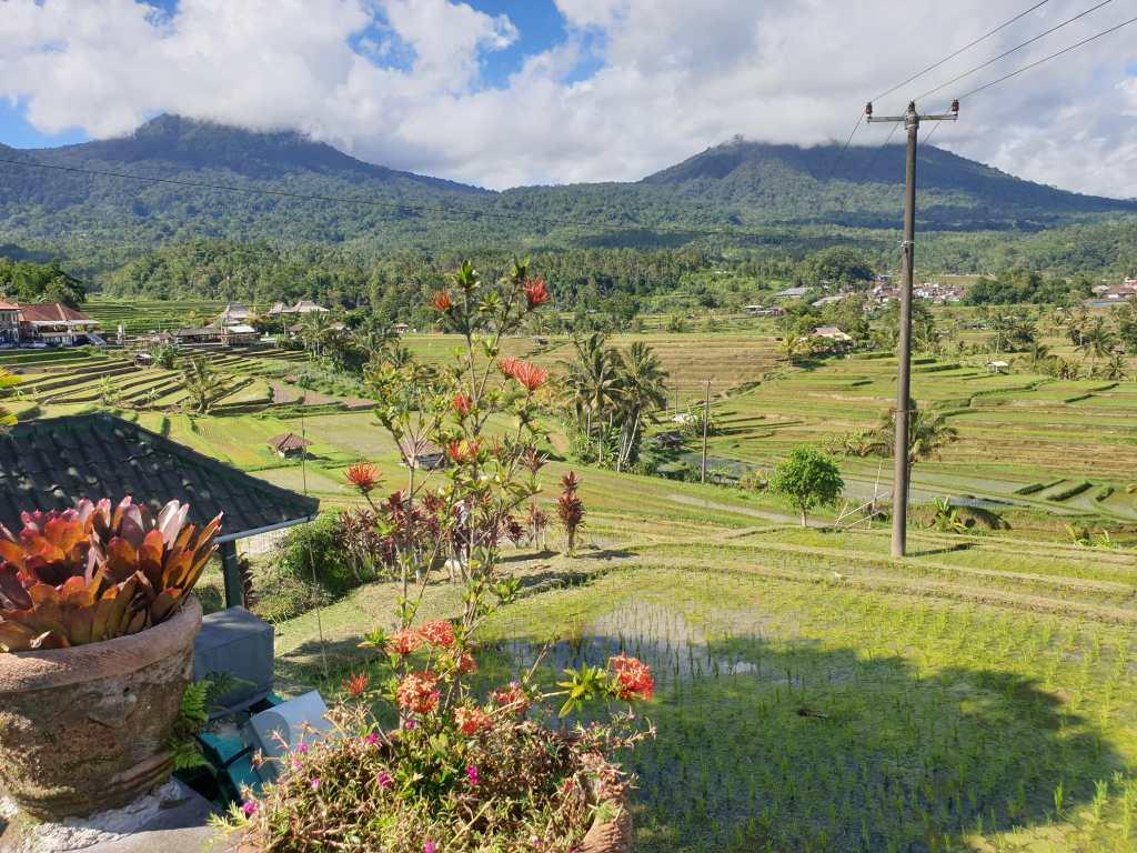 die Reisterrassen von Jatiluwih auf Bali