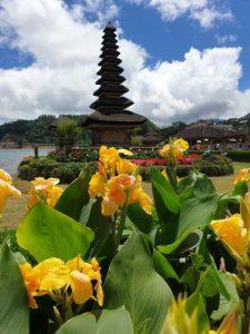 Der pagodenartige Schrein des Ulun danu-Tempels auf Bali