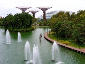 die Supertrees in den Gardens of the Bay in Singapur