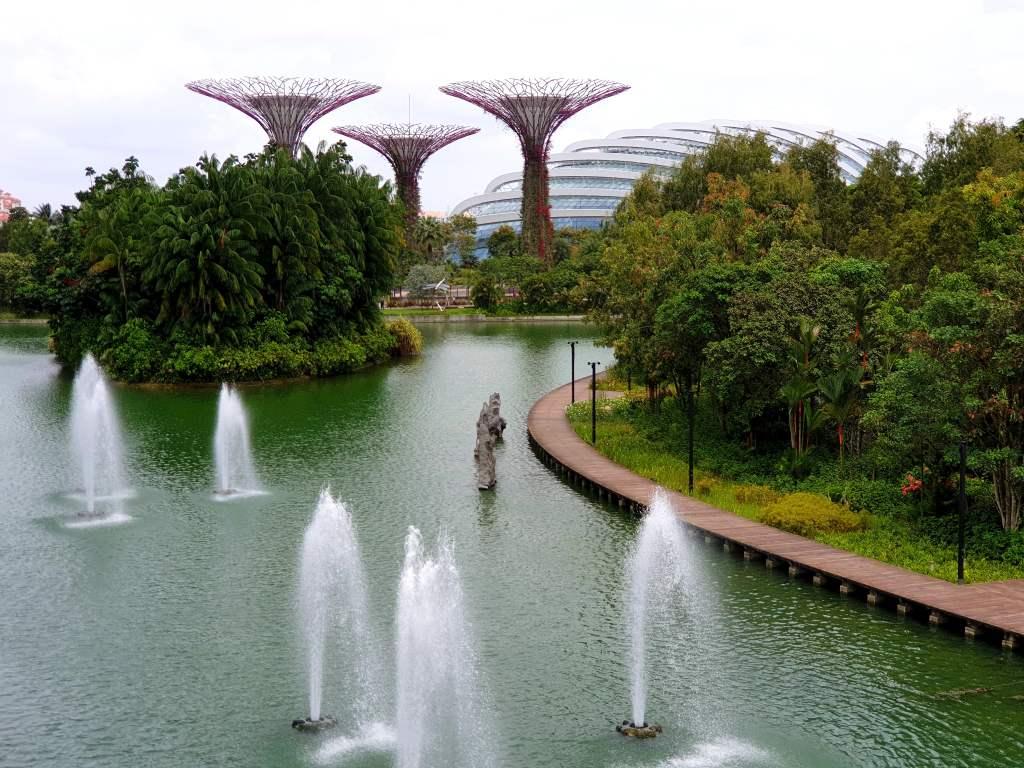 die Supertrees in den Gardens of the Bay in Singapur