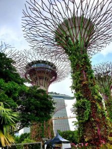 Blick in die Gardens by the Bay, Singapur