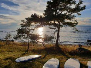 Strand auf der schwedischen Insel Gotland