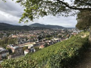 Blick vom Freiburger Schlossberg