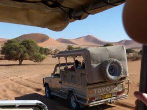 Impressionen aus der Dünenlandschaft Sossusvleiu in Namibia