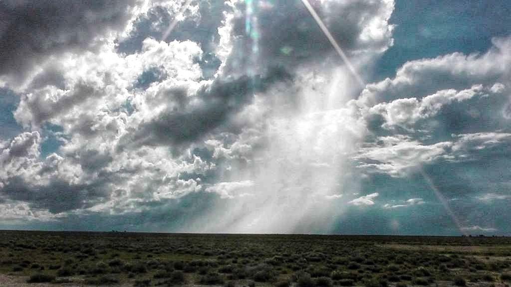 Regenschauer im Etosha-Nationalpark in Namibia
